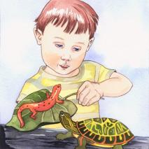 Boy Salamander Turtle